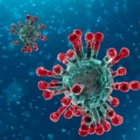 DAT instruments, coronavirus, data logger installation with coronavirus