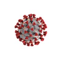 DAT instruments, coronavirus, installazione datalogger ai tempi del coronavirus